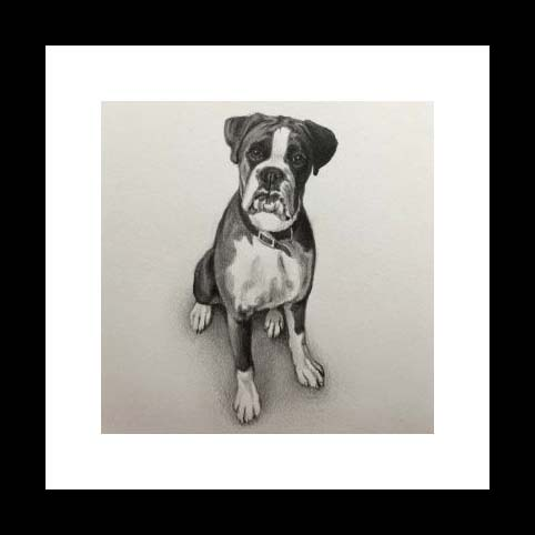 Miniature portrait of your pet – Framed in black