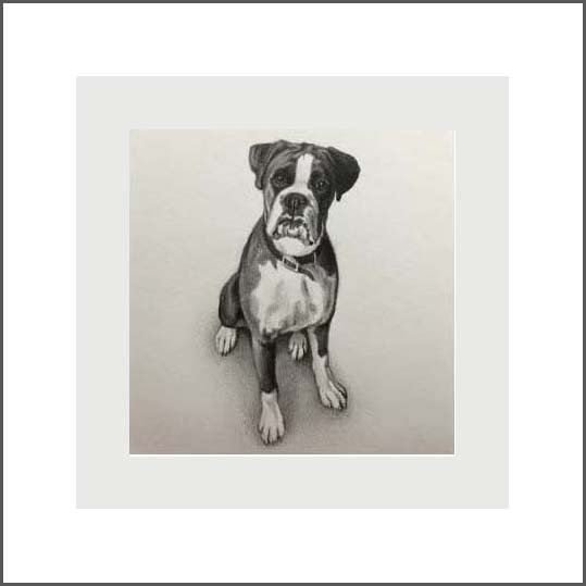 Miniature portrait of your pet – framed in White